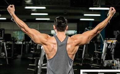 背部肌肉锻炼固)�_背部_背部肌肉锻炼_背部肌肉锻炼方法图解_健身吧