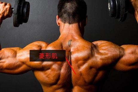 拉伸小腿的动作_菱形肌 - 菱形肌锻炼方法,菱形肌训练及拉伸教程_健身吧