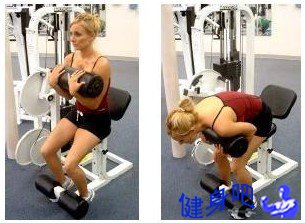器械卷腹:器械卷腹锻炼腹直肌整体部位图解
