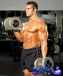 坐姿哑铃交替弯举_哑铃交替弯举 - 锻炼肱二头肌、肱肌动作图解教程_健身吧