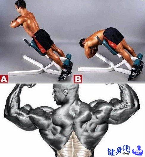 背部锻炼动作_背屈伸-山羊挺身动作图解教程_健身吧