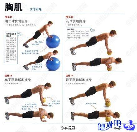 俯卧撑主要锻炼胸大肌和肱三