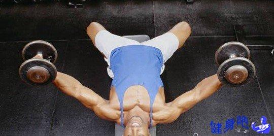 前臂肌肉群的十种锻炼方法