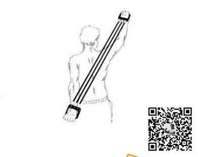 手臂锻炼方法-拉力器健身锻炼图解