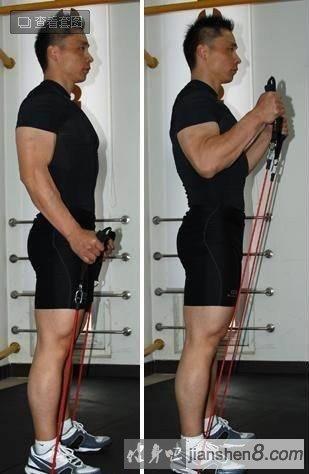 肱二头肌锻炼方法大全:(弹力绳锻炼肱二头肌)