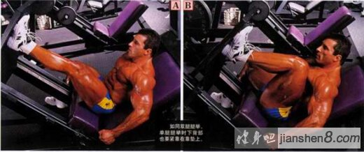 腿部肌肉锻炼方法,单腿推举技术详解