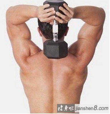 肱三头肌长头怎么练?肱三头肌长头锻炼方法