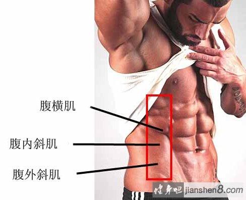 完美腹肌锻炼方法,如何锻炼出完美腹肌?