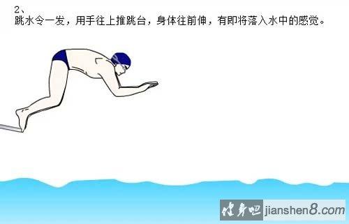 自由泳出发技术动作图解,自由泳出发视频教学