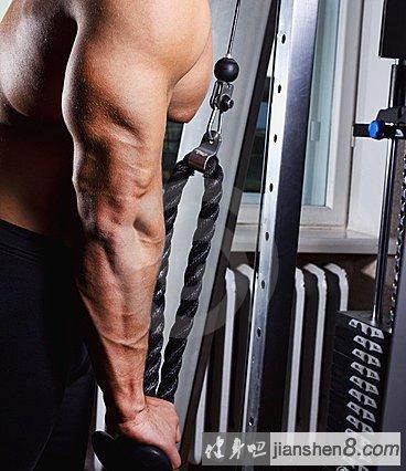 肱三头肌锻炼方法:龙门架高位下压