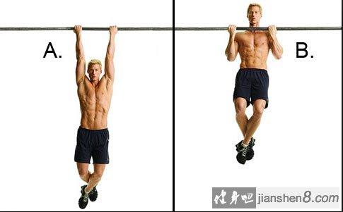 关节)来锻炼肱二头肌