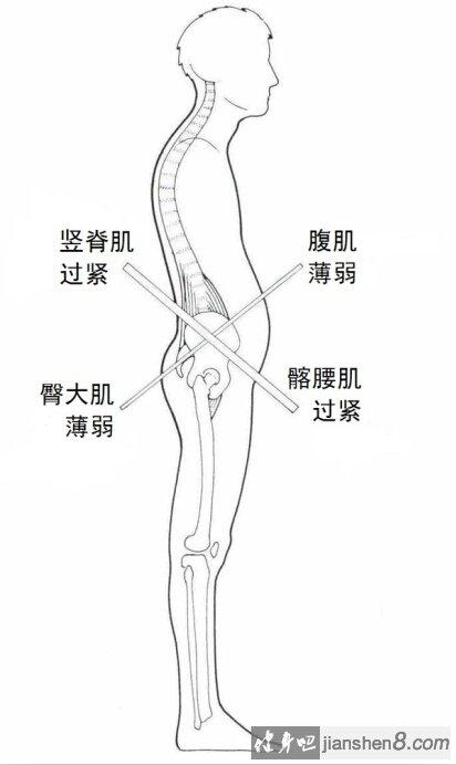 健身步骤教学图
