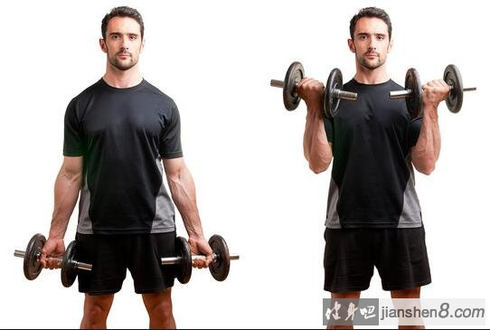 exercises-for-biceps