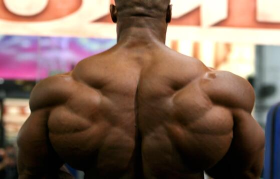 Increase muscle mass vs strength